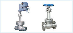 Cryogenic Gate & Globe Valves