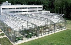 Greenhouses Glas