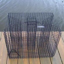 Bait fish trap trader from catch n bait supply co usa for Bait fish trap