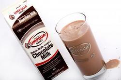 Dutch Style Chocolate Milk