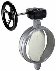 Special Applications /  Butterfly Valve