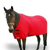 Wicking Horse Rug