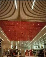 Panel Ceiling