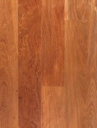Brush Box(Timber Flooring)