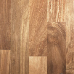 Big River Spotted Gum(Timber Flooring)