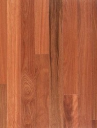 Turpentine(Timber Flooring)