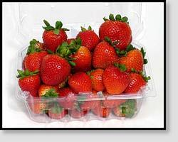 Agricultural Products Strawberry And Fruit Clamshells