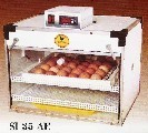 Dominc Black Chick Incubator
