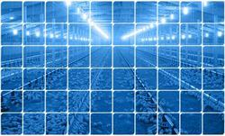 Orion Poultry Lighting System