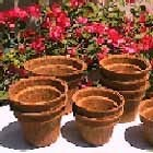 Rubberized Coir Pots