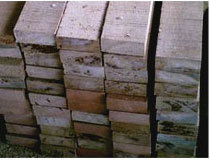 Teng Wood