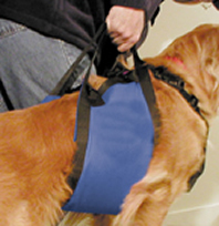 Lift-N-Aid Mobility Harness