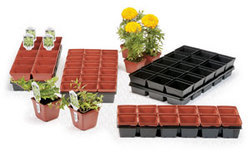 Square Pots And Trays