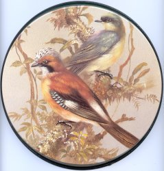Electric Burner Cover (New Birds)