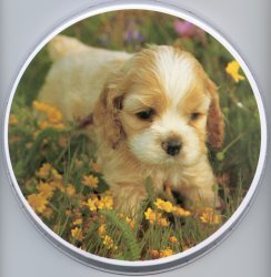 Electric Burner Cover (One Puppy)