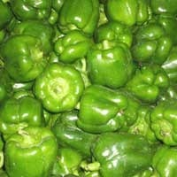 Fresh Green Vegetable - Fresh Capsicum