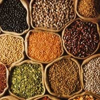 Agro Products - Pulses