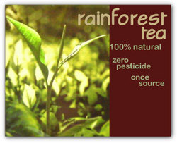 Rainforest Tea