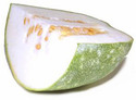 Fresh White Gourd Vegetable