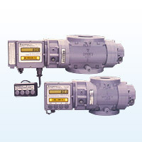 Rotary Gas Meter (Electronics)