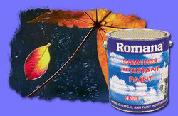 Romana Weather Registrant Paint